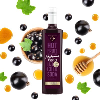 Q Blackcurrant & Honey Hot & Cold Infusion 500mL