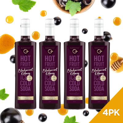 Q Blackcurrant & Honey Hot & Cold Infusion 500mL (Limited Release)